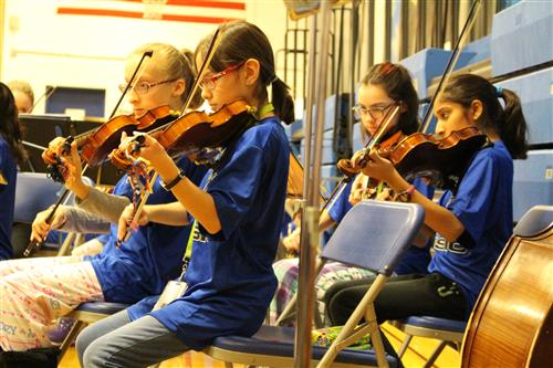 Four students playing violins