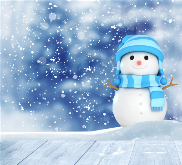 All CCSD 89 schools closed December 24 - January 4
